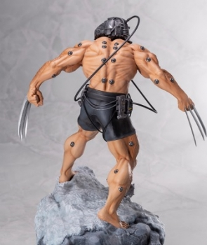 Marvel Universe Weapon X 3