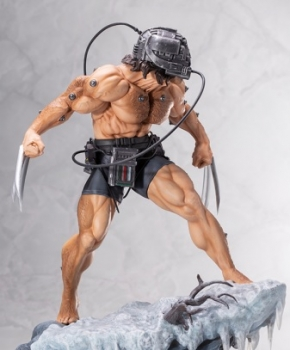 Marvel Universe Weapon X 5